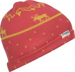 Mountain Moose Kids Beanie